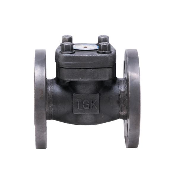 1-WAY PRESSURE VALVES STEEL A105 flange # 800