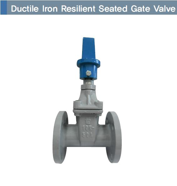 Ductile iron resilient seated gate valve (Flange 10k)